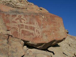 Besichtigung der Petroglyphen nahe Nasca, PERU