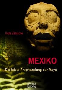 2012 Mexiko Vortrag 1 205x300 Vortäge
