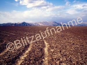 Bodenzeichnung von Nasca Die Spinne Peru e1336245339308 Forschung