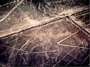Spinne 300x225 PERU | Bilderbuch der Wüste